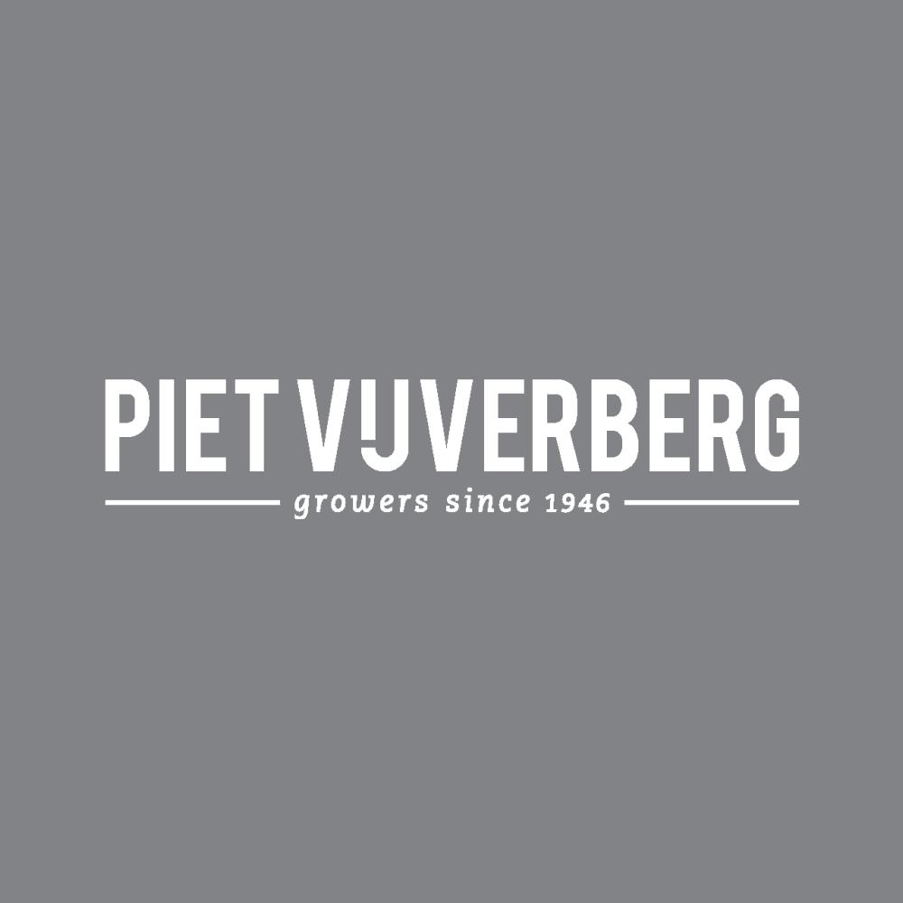 pietvijverberg